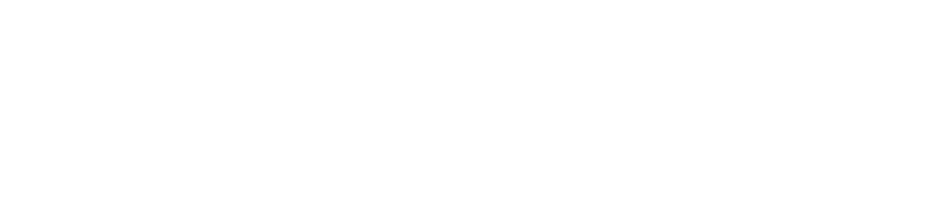 Pegasus logo Leaders with website caps